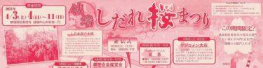【行ってみよう】南砺市城端地域で開催される城端しだれ桜まつりで「あそびば」もオープンします!