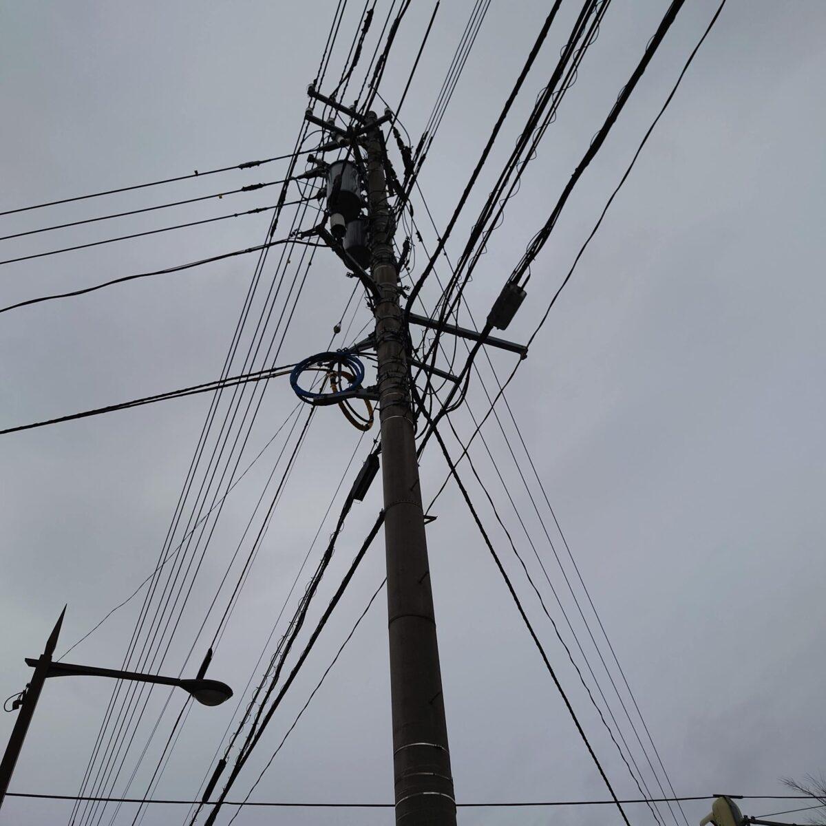 「カラスの巣監視中」と表示されている電柱の上部には巣らしきものはなかった。
