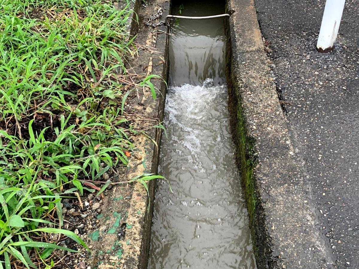 増水後の小川2