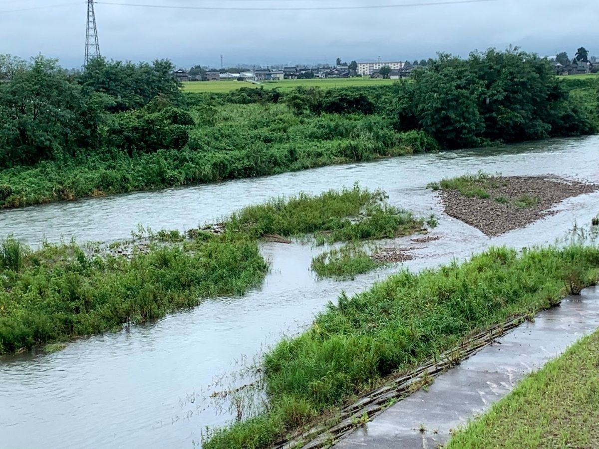 増水した小矢部川2